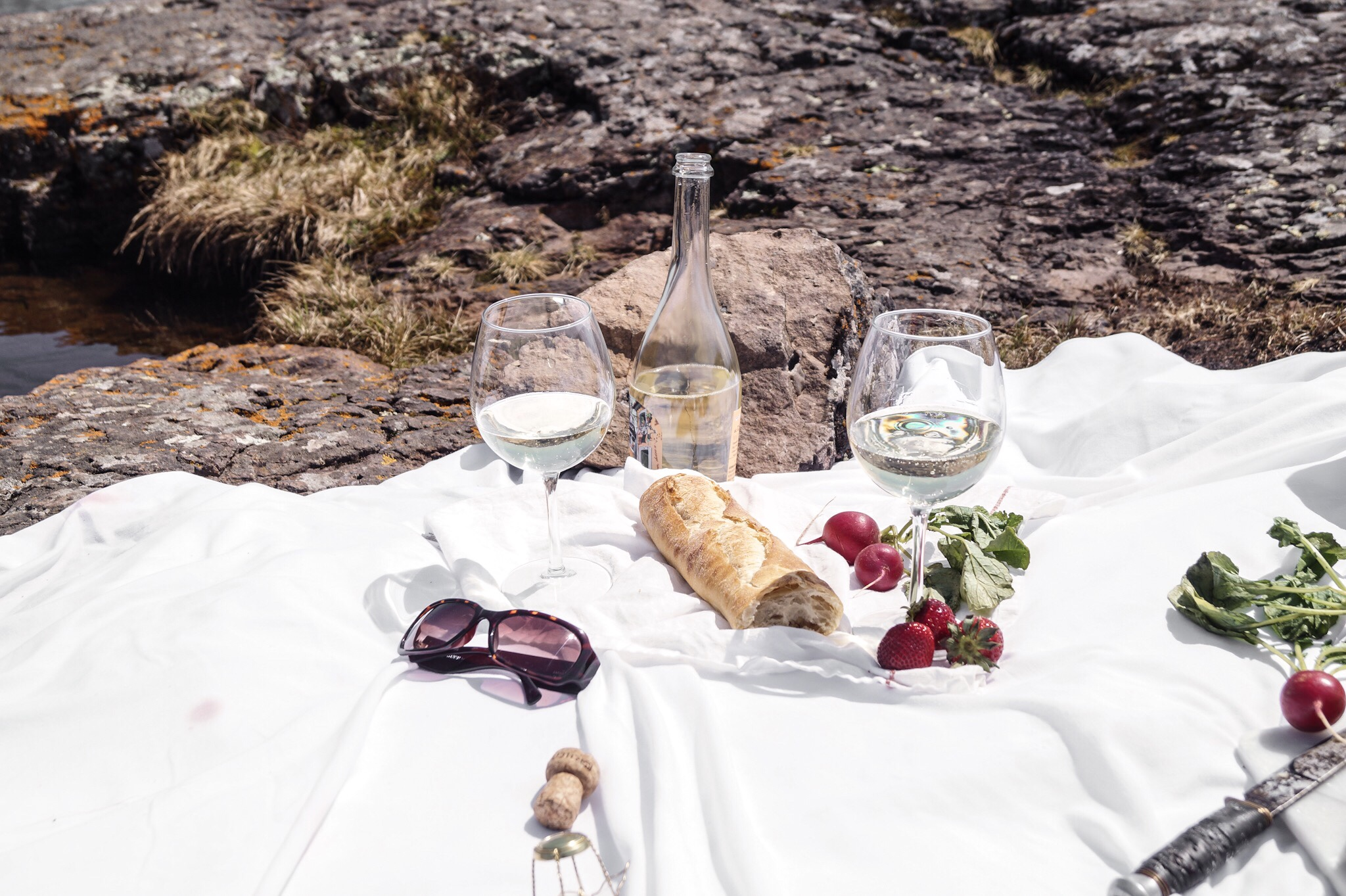 Simple ingredients for a romantic picnic