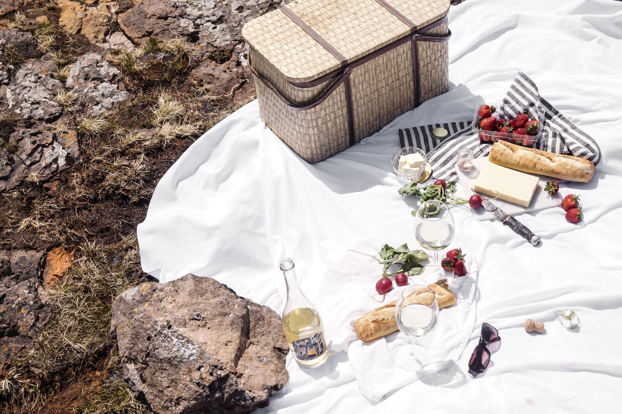 Romantic picnic by the shore